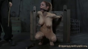 Tattooed Rainfall Degrey anal passage getting drilled applying thing in BDSM