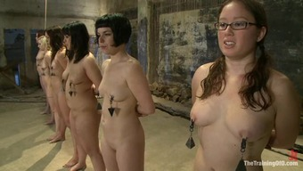 Four attractive babes get involved and humiliated by their master