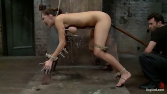 A great deal of belts and wires to effectively bondage this petite hun Holly Michaels