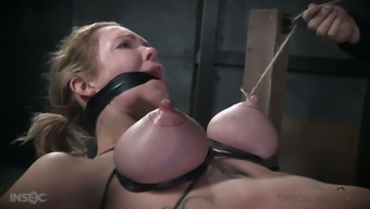 Rather bendy MILF Pour DeGrey gets to know what mammary servitude is