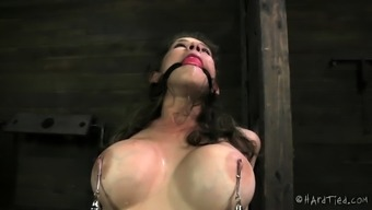 daintily hardcore BDSM rope sex with anal action